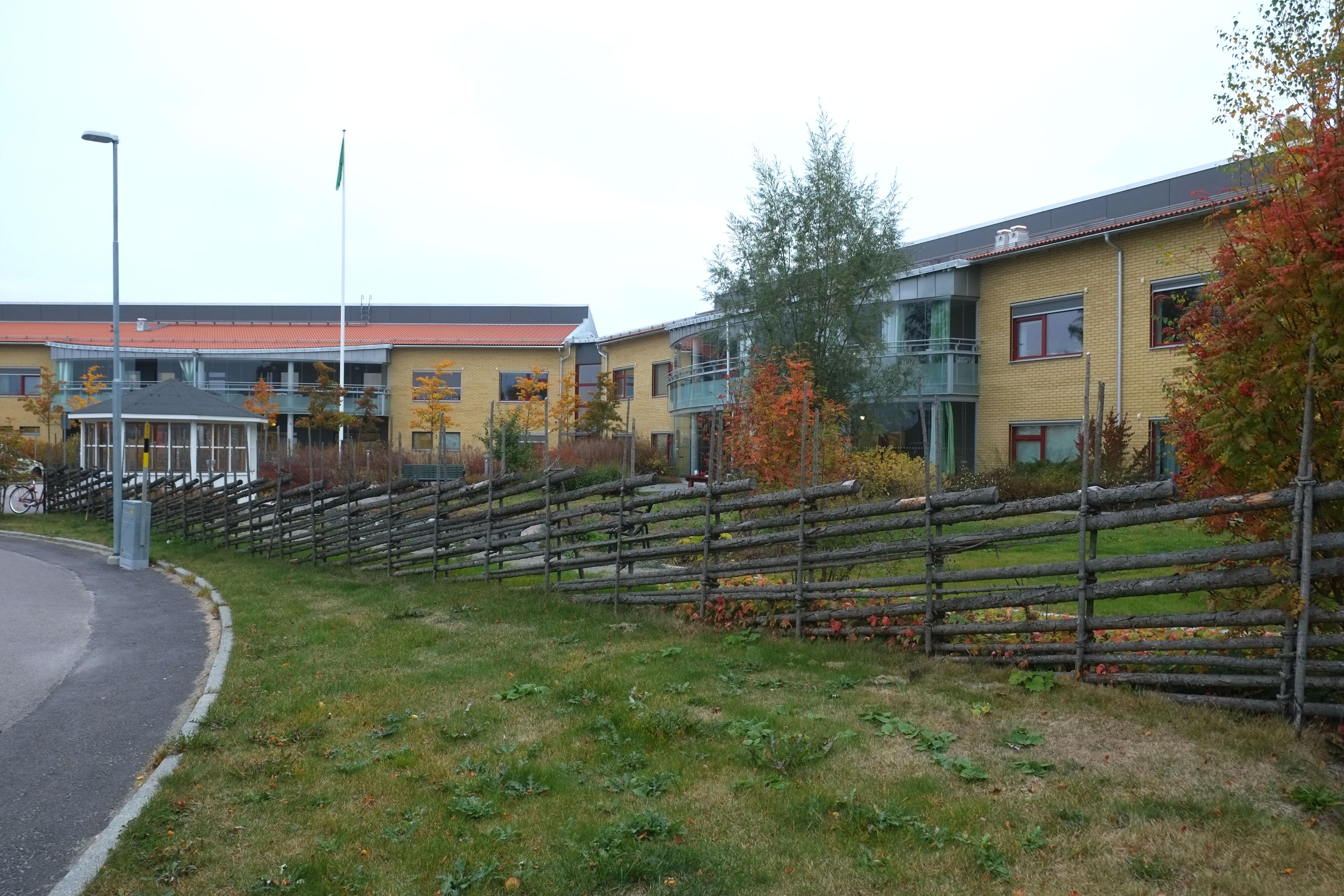 Gärdsgård i terapeutisk trädgård vid äldreboende