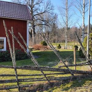 Gärdsgård före_1200x1200