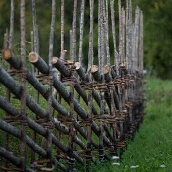 Från skog till gärdsgård i bilder