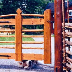 Gärdsgård och trägrind för gård med hund.