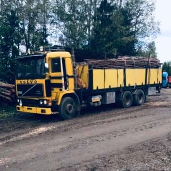 Gärdsgårdsvirke packat för transport på lastbil.