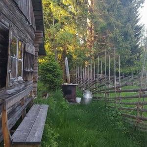 Gärdsgård och mjölkkanna vid fäbodvallen Östnårsbuan, Jämtland
