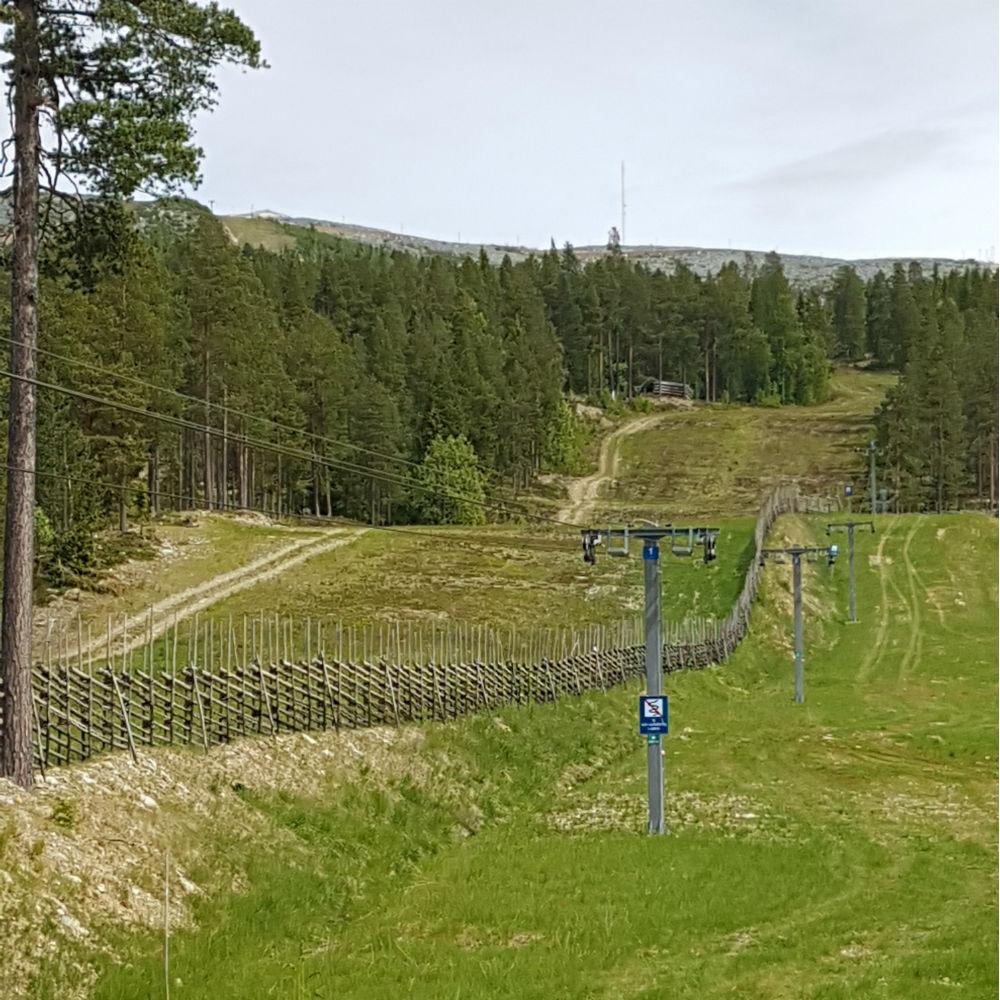 Skistar_Björnrike_20170619_135535_1000x1000.jpg