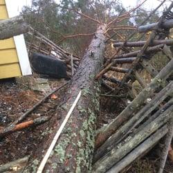 Stormskadat staket