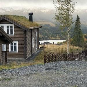 Gärdsgård i fjällmiljö, Åre.