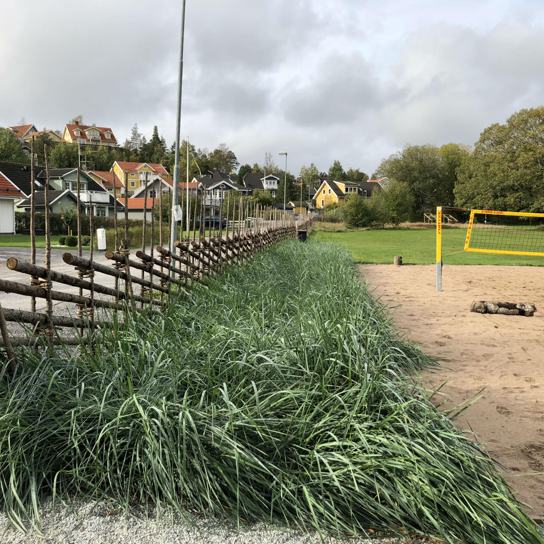 Gärdsgård i offentlig miljö